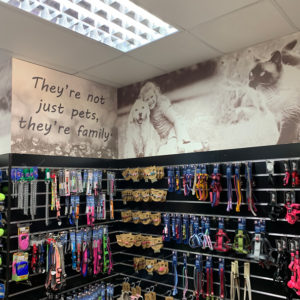 PETCO Wallpaper Branding